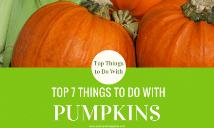 Top 7 Things to Do with Pumpkins