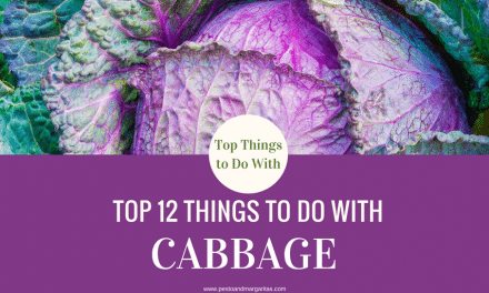 Top 12 Things to Do with Cabbage